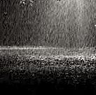 Wenn der Regen auf die Erde fällt..jpg
