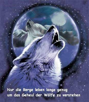 Wolf Start